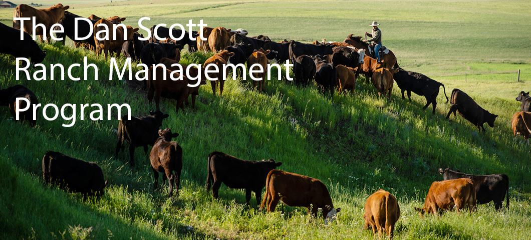 The Bachelor of Science degree in ranching systems aims to graduate students with the knowledge and skills to employ prudent ranching practices that create value and improve the state and country's natural resources.