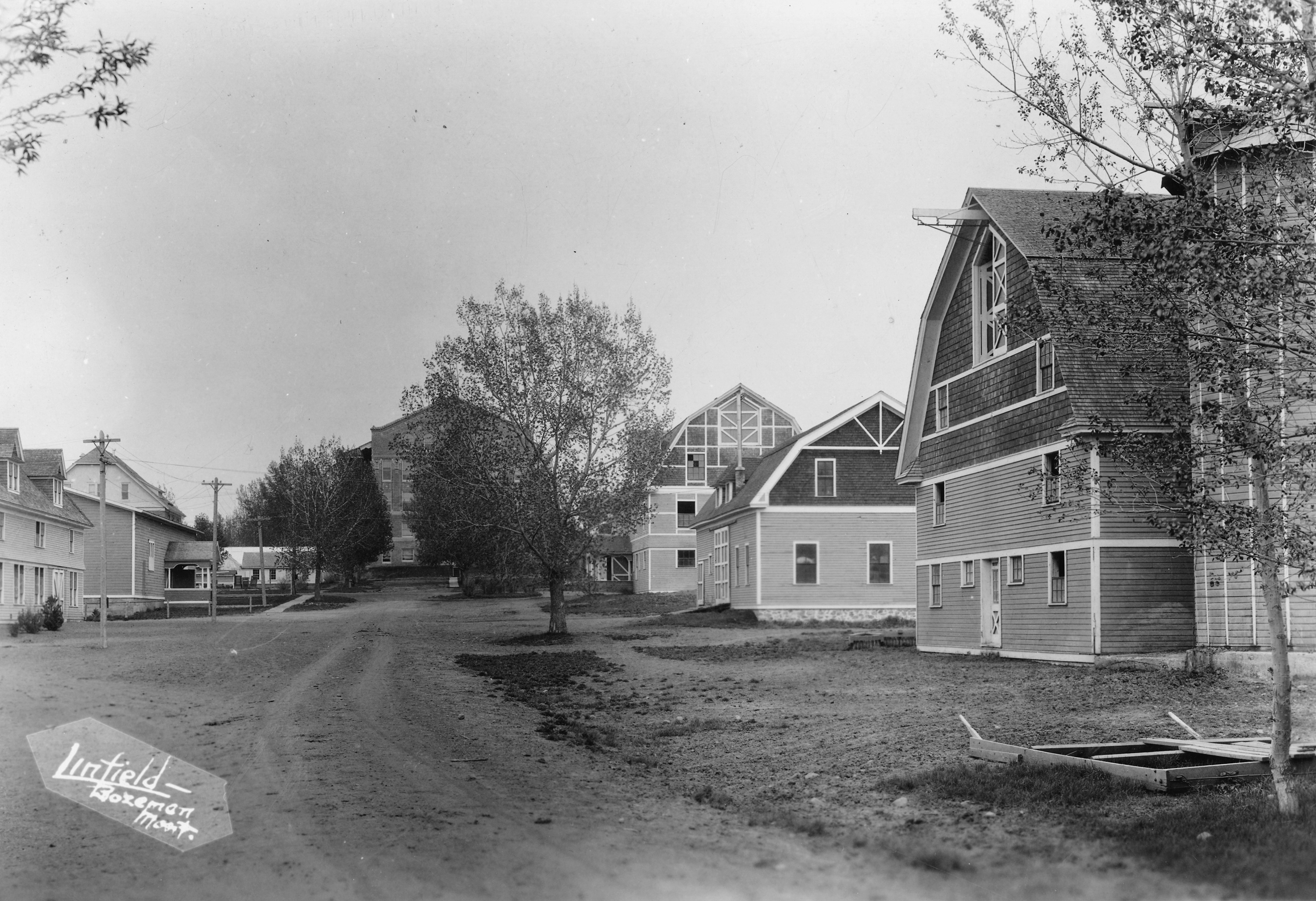Early Animal Science buildings facing east.